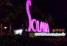 족자카르타 식당정보-  공항 솔라리아